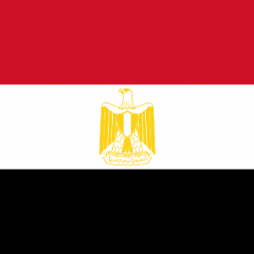 SAI Egypt Contributes to Global Anti-Corruption Initatives,
