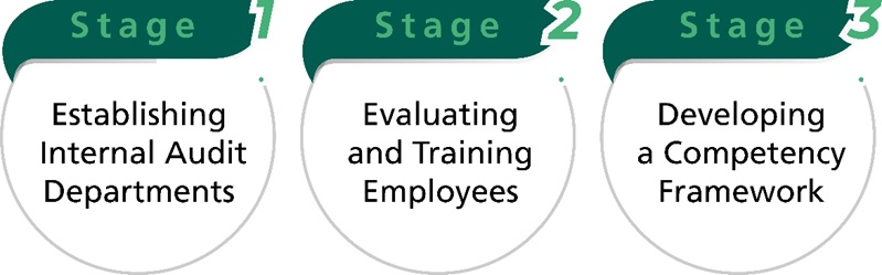 Figure 1: Stages toward Enhancing the Internal Audit Function of the Public Sector