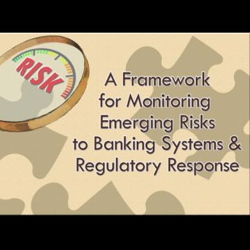 Emerging Risk Framework for Banking Systems, Regulatory Response