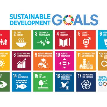 Towards Agenda 2030: A Gender Equal World
