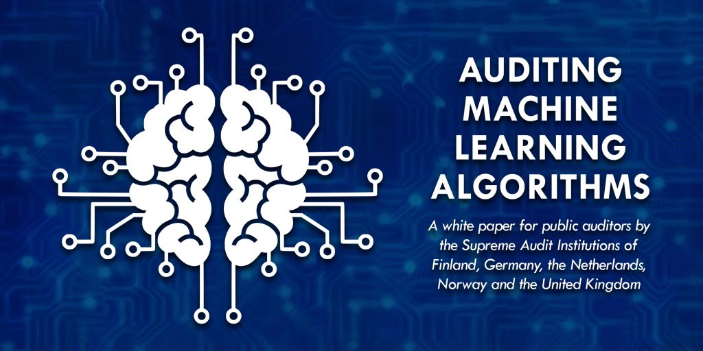 Auditing Machine Learning Algorithms